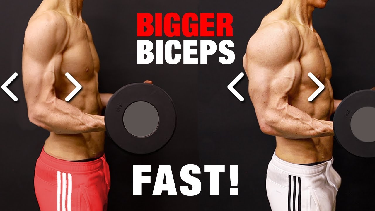 How To Build Bigger Biceps Muscles Fast